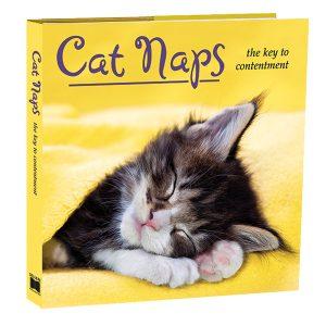 3D-Cat Naps