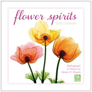 Flower Spirits 2020 Wall Calendar