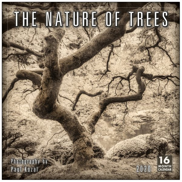 The Nature of Trees 2020 Wall Calendar
