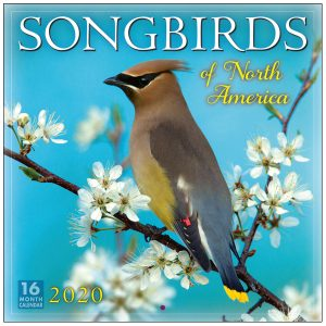 Songbirds 2020 Wall Calendar