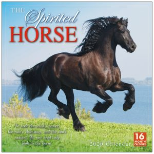 The Spirited Horse 2020 Wall Calendar