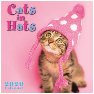 Cats In Hats 2020 Mini Calendar