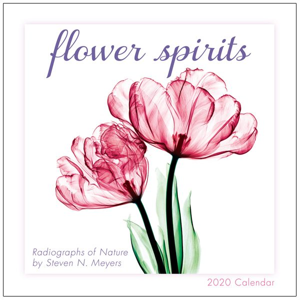 Flower Spirits 2020 Mini Calendar