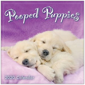 Pooped Puppies 2020 Mini Calendar