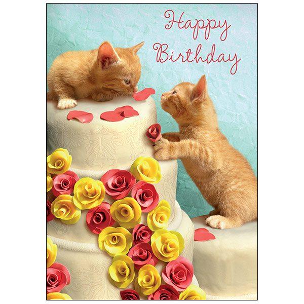 RSVP Birthday - B3377, Chiara Castellini