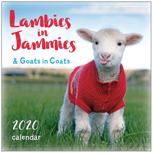 Lambies In Jammies 2020 Mini Calendar